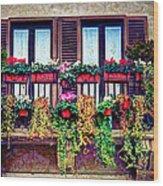 Window Flower Wood Print