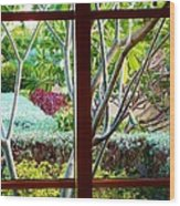 Window Garden Wood Print