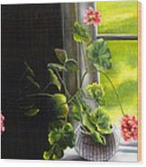 Window Geranium Wood Print