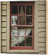 Window - Glimpse Into The Past Wood Print