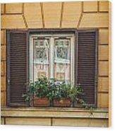 Window In Rome Wood Print