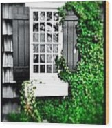 Window Wood Print