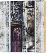 Window Of Renaissance Paris France Wood Print