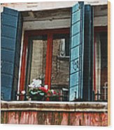 Window Of Venice Wood Print