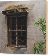 Window On Canvas Wood Print