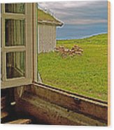 Window On Sod-covered Roof In Louisbourg Living History Museum-1744-ns Wood Print