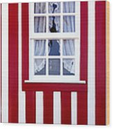 Window On Stripes Wood Print by Carlos Caetano