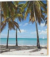 Window On The Caribbean II Wood Print