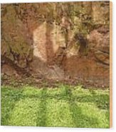 Window Reflections On Grass And Rock Face Wood Print