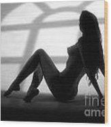 Window Silhouette  Wood Print