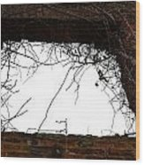 Window Through Time Wood Print