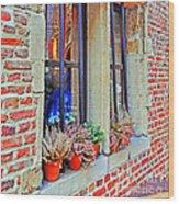 Window To Antwerp Wood Print