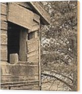 Window To Nowhere - Sepia Wood Print