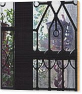 Window View 2 Wood Print