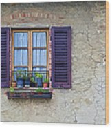 Window With Potted Plants Of Rural Tuscany Wood Print by David Letts
