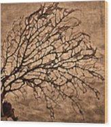 Windowpane Coral Wood Print