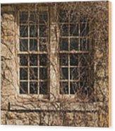 Windows And Weeds Wood Print