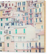 Windows Of Cinque Terre Italy Wood Print by Kim Fearheiley