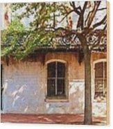 Windows Of Savannah Wood Print