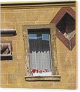 Windows To Budapest Wood Print