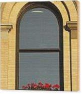 Windowsill Gerraniums Wood Print