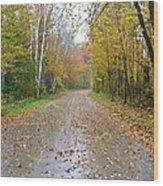 Windy And Rainy Fall Day Wood Print