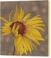 Windy Flower Wood Print