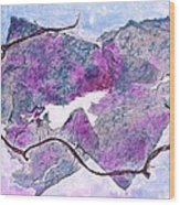 Wine Country In Northern California  Wood Print