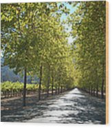 Wine Country Napa Wood Print