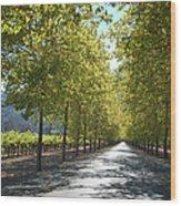 Wine Country Napa Wood Print