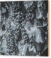 Wine Grapes Bw Wood Print