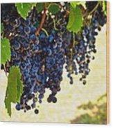 Wine Grapes Wood Print by Kristina Deane