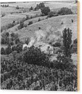 Wine Yard Wood Print
