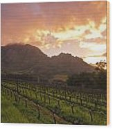 Wineland Sunrise Wood Print by Aaron Bedell