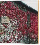 Winery Ivy Wood Print