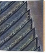 Wing Feather Detail Of Swallow Sem Wood Print