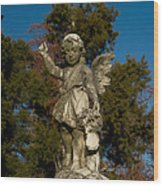 Winged Girl 12 Wood Print