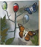 Winged Metamorphose Wood Print by Billie Jo Ellis