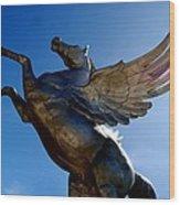 Winged Wonder I Wood Print