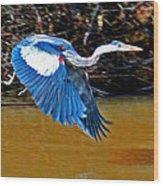 Wings In Flight Wood Print