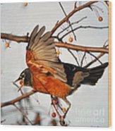 Wings Of A Robin Wood Print