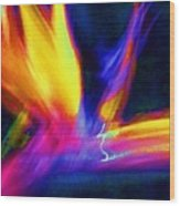 Wings Of Color Abstract  Wood Print