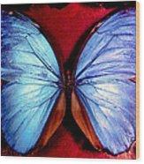 Wings Of Nature Wood Print