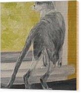 Winkie Wildcat Wood Print