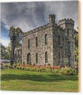 Winnekenni Castle Wood Print