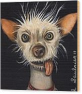 Winner Of The Ugly Dog Contest 2011 Wood Print
