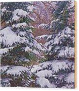 Winter  5 Wood Print