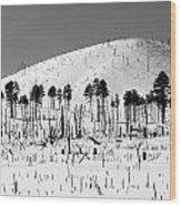 Winter After Fire-san Francisco Peaks Wood Print