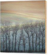 Winter Alley Wood Print