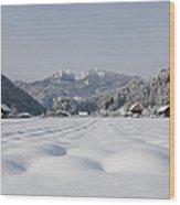 Winter Alpine Valley Wood Print